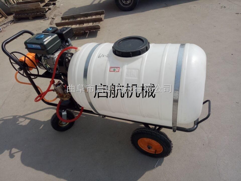 農藥殺蟲噴霧器 汽油噴藥打藥機 果園打藥車