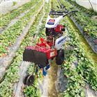 FX-GLJ178型旋耕管理机 手扶起垄开沟培土机价格