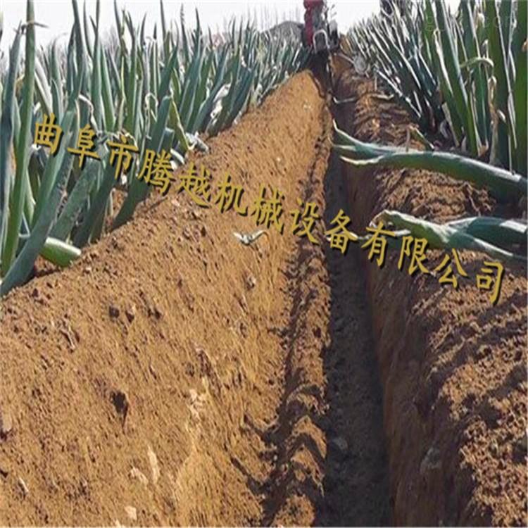 大葱土豆培土机图片 电启动管理机价格