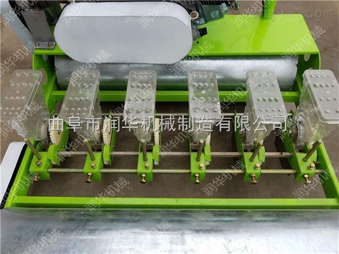 自走式汽油精播机 可调株距播种机价格
