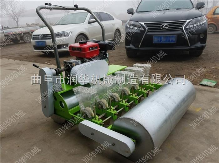 优质耐用的蔬菜播种机 厂家直销牧草种植机