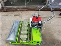 播种深度可调的蔬菜播种机 耐用优质点播机