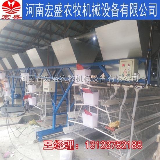 喂料机-河南省宏盛自动喂料机质优价廉厂家直销