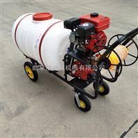 手推式打药机 果园喷药机 汽油拉管喷雾机