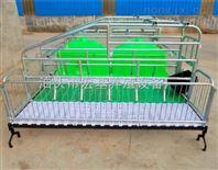 养猪设备厂家供应双体2.2*3.6母猪产床促销