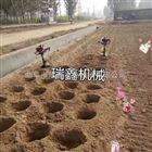 地钻挖坑打孔机视频 植树高效挖坑机
