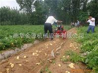 价格实惠土豆收获机 省人工洋芋山芋收割机