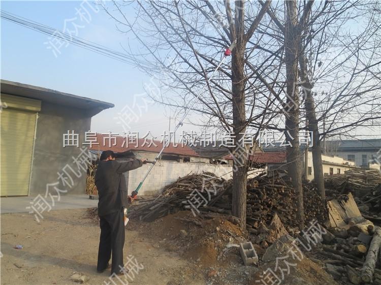 RZ-GZJ-2-伸缩式高空修枝锯 果树修剪油锯 新型修剪锯