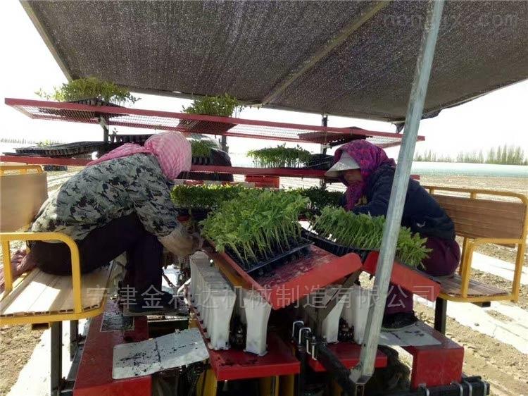 田耐爾高產高效率玉米移栽機