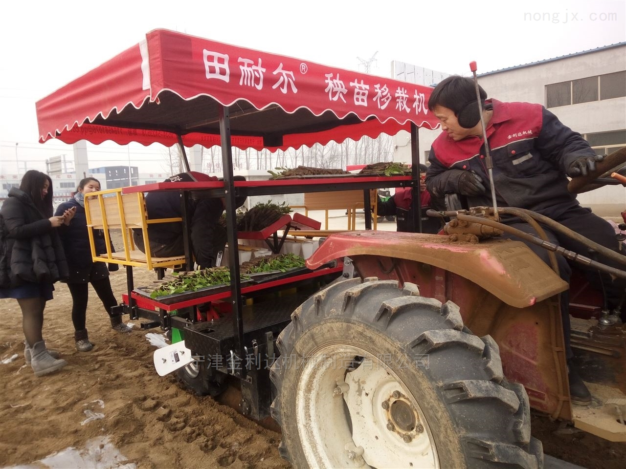 秧苗機械哪家好田耐爾玉米移栽機不錯的選擇