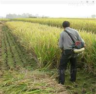田间菜地背负式除草机 四冲程稻麦收割机