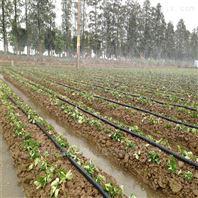 滴灌厂家供应45型五孔微喷带 喷水带喷灌带