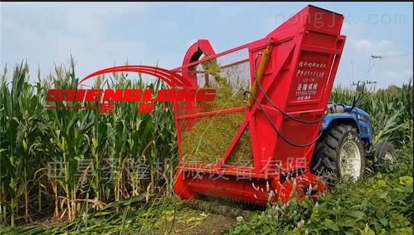 行走式玉米秸秆收割粉碎机 青贮收集机批发
