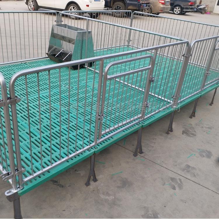 养猪设备仔猪保育床价格
