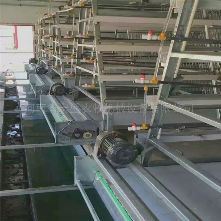 厂家直销养鸡履带式清粪机除粪便无残留防跑偏层叠式蛋鸡笼养设备
