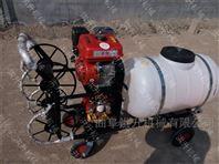 推车式园林打药机 供应人力手推汽油喷雾器