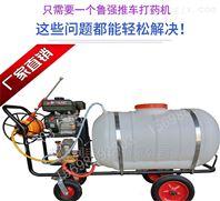 卷管型喷药机 生产手推式喷雾器厂家
