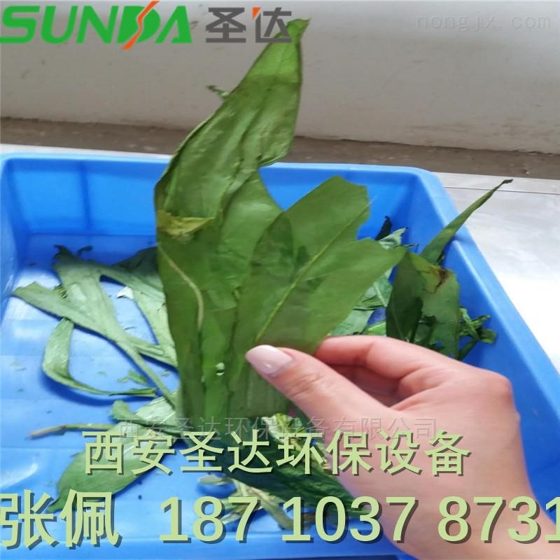 户县大棚蔬菜干燥机 微波杀青脱水设备