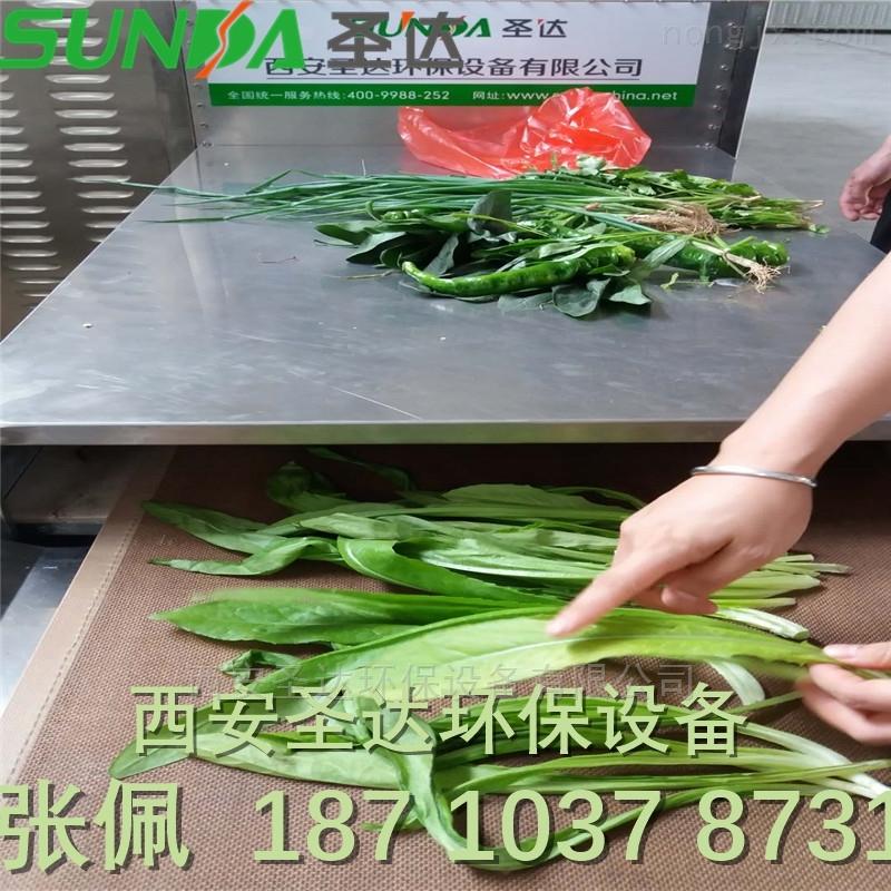绿色蔬菜用微波杀青设备 微波干燥设备