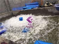 鱼塘水产养殖浮船叶轮式增氧机