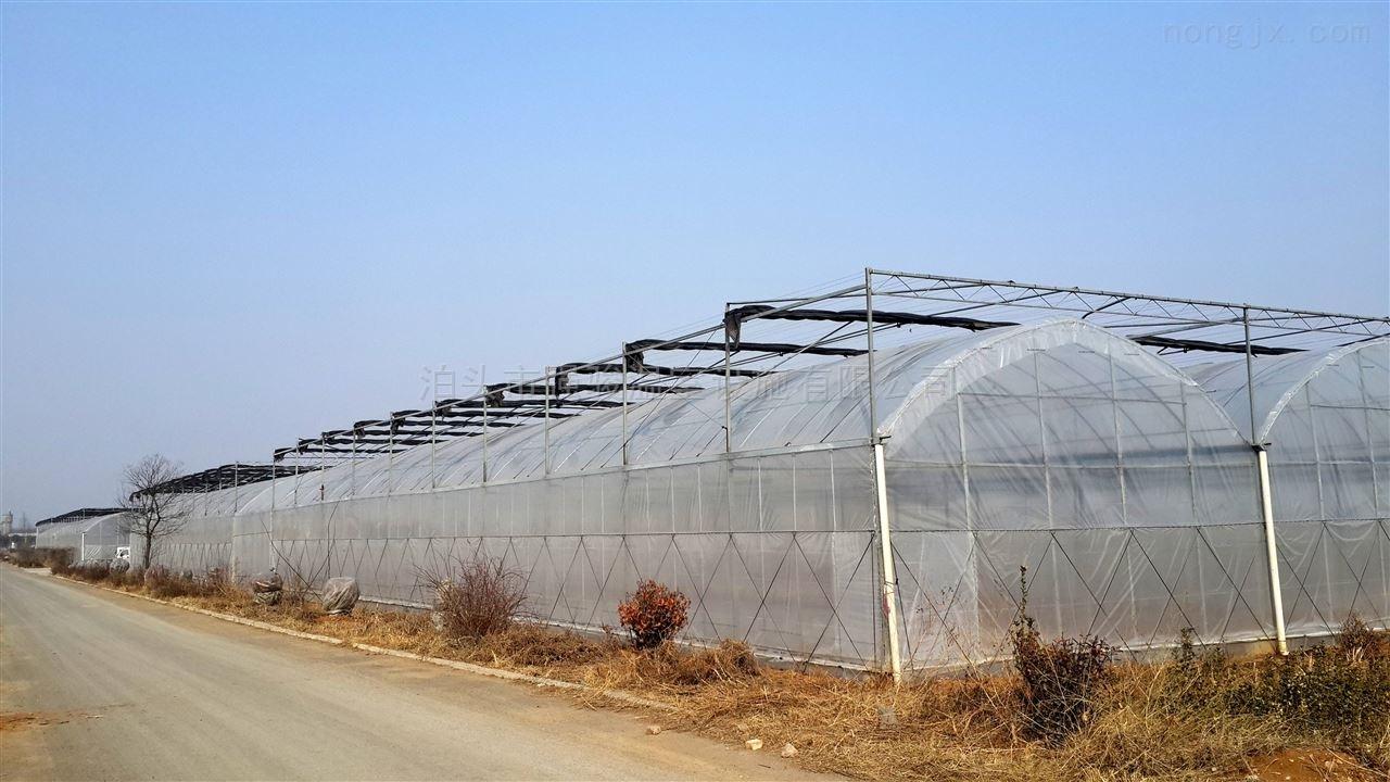 连栋蔬菜大棚薄膜温室