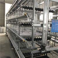 皮带清粪系统 厂家低价直供 配加厚pp带