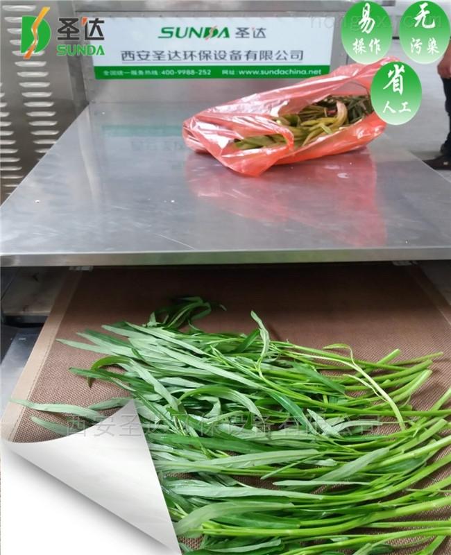 大量厂家批发蔬菜干燥机微波干燥设备