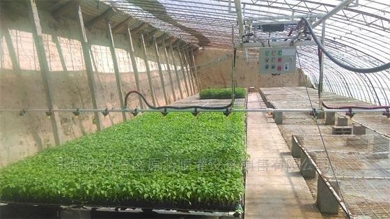 育苗专用无级调速遥控温室喷灌机大棚喷水车