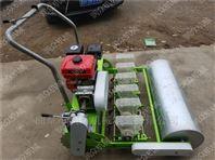 大葱精播机 辣椒种植机 家用蔬菜播种机