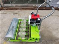 菜地韭菜菠菜播种机 汽油多行菜籽精播机