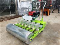 精播种植机 油菜播种机 种植油菜精播机