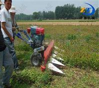 手扶式稻麦割晒机 牧草秸秆辣椒收割机