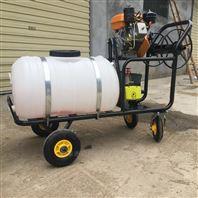 葡萄苹果果园喷雾器 汽油除虫打药机