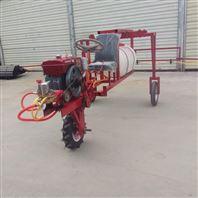 推车式打药机农用喷雾器园林绿化农用洒水车