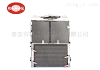 GTG1804.13W.010-1散热器