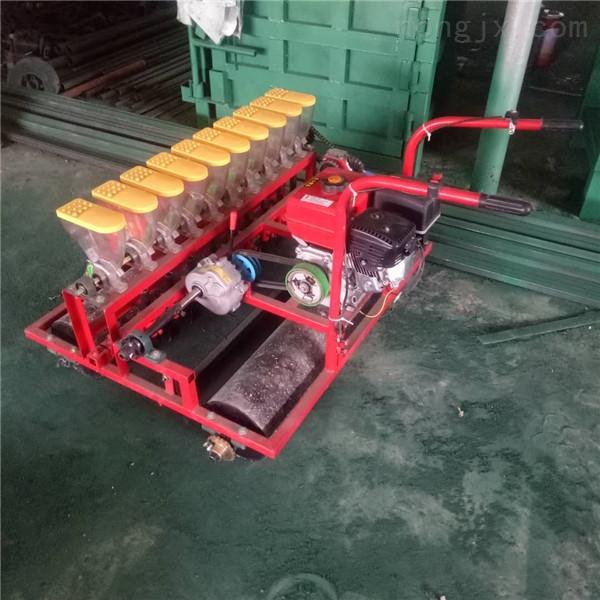 新型开沟覆土精播机 辣椒玉米精量播种机