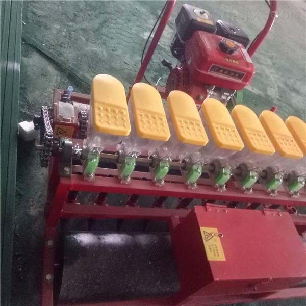4行玉米谷物铺膜播种机 手扶带马铃薯种植机