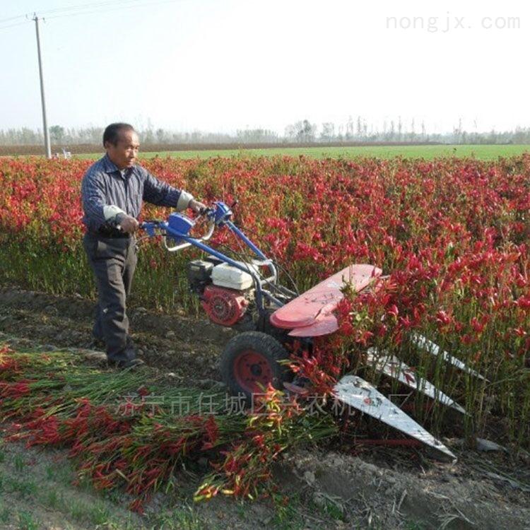 农用小型辣椒收割机 手扶自走式割晒机