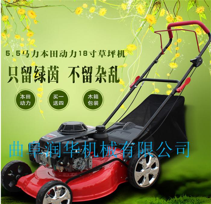 草坪整理专用剪草机 手推轻巧型本田草坪机