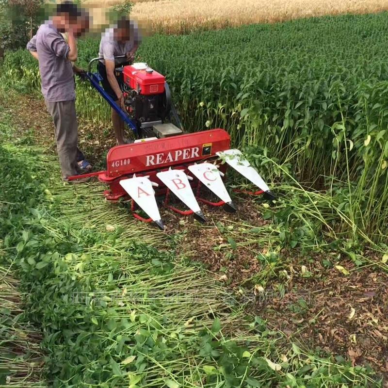 操作省力收割机高效率玉米牧草割草机