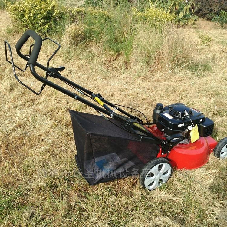 耐用本田草坪机 自走式草坪梳理机
