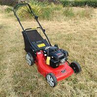 老少都会使用省时省力剪草机大功率草坪机