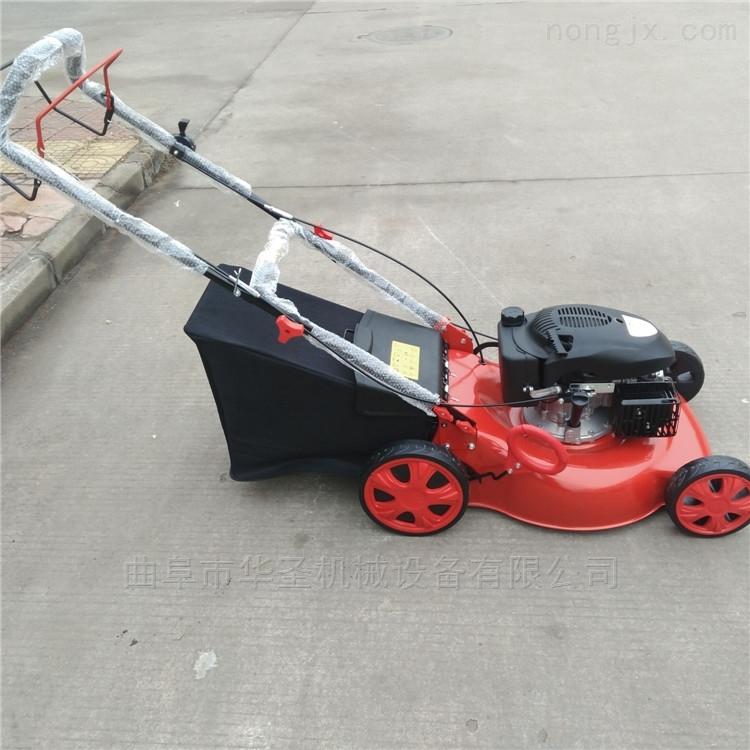 高效率汽油动力剪草机 省时省力草坪机