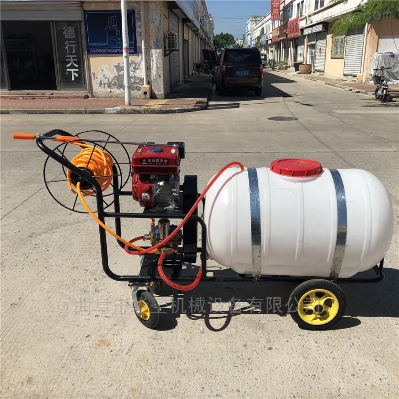 大@ 容量汽油打药机 高效率果园喷雾机