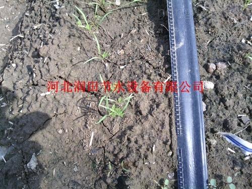 焦作市沁阳市农田滴灌系统 贴片滴灌带