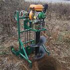 JX-WK手提双人挖坑机品牌 汽油手推打洞机