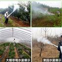 rxjx-ywj农用高压打药喷雾器 植保除虫打药机型号