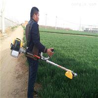 汽油割草机 草坪修剪丑化 惯例自走草坪机