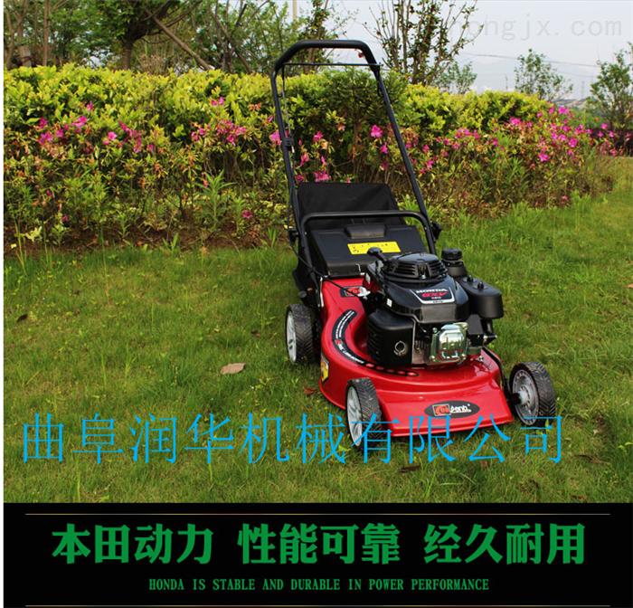 强力高效灌木割草机 庭院草坪修剪剪草机