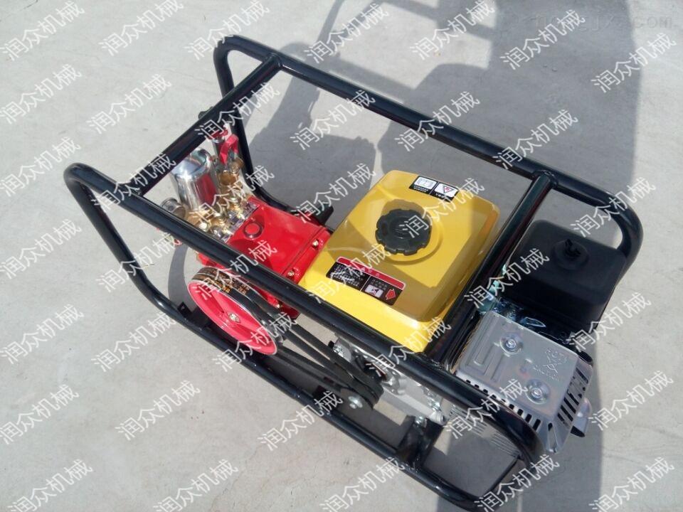 农用小型喷药机 自走式喷雾器 手推打药机